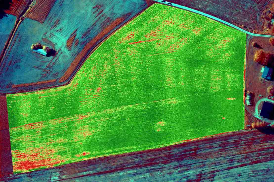 NDVI map of crop, UAS survey